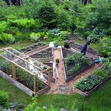 Fruit And Vegetable Garden Layout How To Grow Your Own Superfoods Layouts Minerals And Gardens