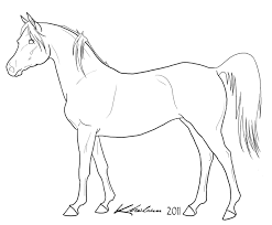 arabian horse coloring pages coloring page