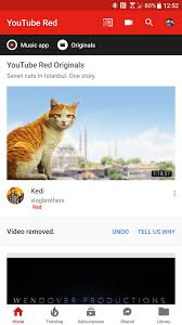 Google Top Bar Youtube Changes Its App Interface Yet Again Moving To Bottom Tab