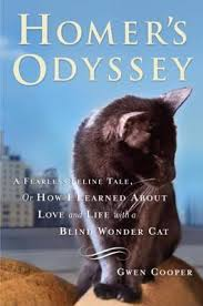 What Is A Blind Sort Homer U0027s Odyssey By Gwen Cooper