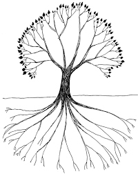White Oak Tree Drawing Tree With Roots Drawing Baoe Tk