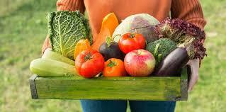livraison de fruits au bureau fruits et pesticides livraison de fruits bio au bureau bien o boulot
