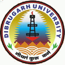 Dibrugarh University CEE 2013