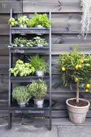 patio herb garden gardening ideas