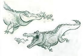 illustration animal reptile crocodile alligator frog http