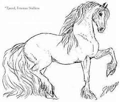 draft horse coloring pages coloring