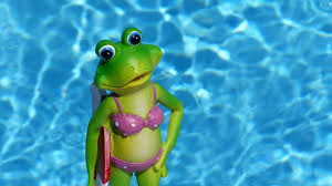 Decorative Frogs Free Photo Frog Summer Water Free Image On Pixabay 830868