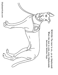 chic inspiration greyhound animal coloring pages free pages