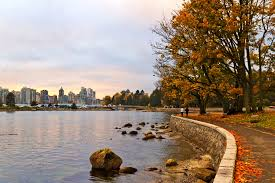 Stanley Park Stanleypark Liv Twitter by Vancouver Stanley Park Wallpaper Vancouver A Dream
