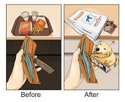 si e psa zmieni się twoje życie kiedy przygarniesz psa