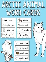 arctic animal picture word cards prekinders