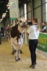 chambre d agriculture du calvados concours départemental 2017 5ème section