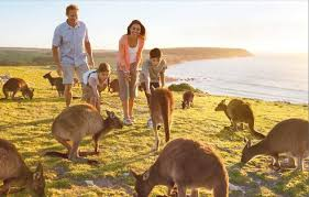 australia tourism bureau australia tourism australia tourist attractions map of australia