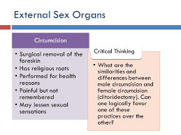 Anatomy Difference Between Male And Female Male Sexual Anatomy And Physiology Ppt Video Online Download