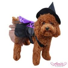 Dog Costumes Halloween 92 Dog Clothes Images Animals Costumes