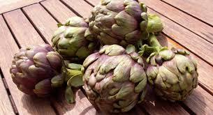 cuisiner les artichauts violets produits régionaux artichaut violet du roussillon escapadeslr