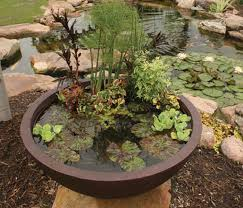 Aquascape Ponds Pro Tips You Want To Install A Pond Or Water Feature
