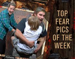 Halloween House Lights Video by Pictures And Video Nightmares Fear Factory Clifton Hill