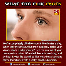 Be Blind For A Day Susan Feiler Bluefrog7177 Twitter