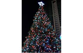 Decorated Christmas Trees Vancouver by Gallery 10 Myths About Real Christmas Trees