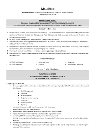 Sample Resume Youth Mentor by 100 Mis Sample Resume Free Sample Resume For Mis Executive