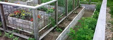 Pretty Garden Ideas Outdoor Garden Design Inspiring Landscape Timbers For Awesome