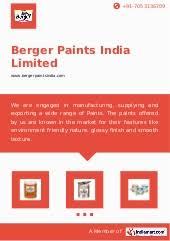 strategic management assignment on berger paints