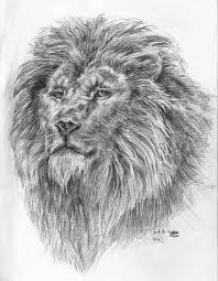 sketches rodhagge com