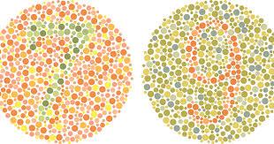 Color Blind Camouflage Test 5 Free Computer Software For Color Blindness