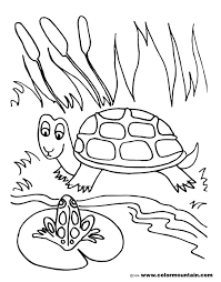 frog and turtle coloring sheet create a printout or activity