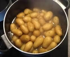 comment cuisiner les pommes de terre grenaille pommes de terre grenaille à l ail et au persil recette de pommes