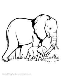 wild animal coloring pages elephant family coloring