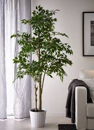 How To Arrange Indoor Plants by The 25 Best Fake Plants Ideas On Pinterest Hanging Terrarium