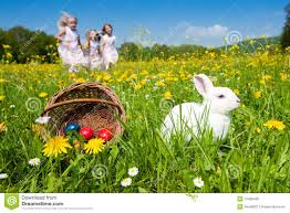 Easter Egg Quotes Easter Bunny Watching The Egg Hunt Stock Photo Image 12485400