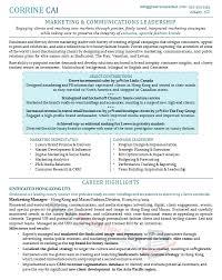 executive resume examples resume templates