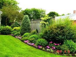 small backyard ideas no grass design landscaping dubious best