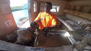 Conch House by Goldie U0027s Conch House Nassau Bahamas Youtube
