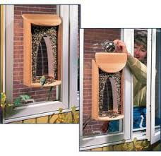finding the best birdfeeder ohmyapartment apartmentratings