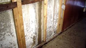 efflorescence in the basement causes and solutions ask the