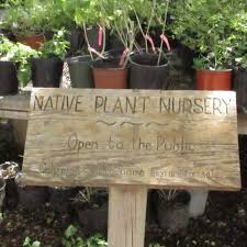 native plants nursery file valley nature center is the place to find your local south