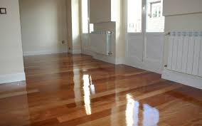 best steam cleaner for wood floors can you steam clean laminate