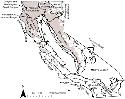 Grey And White Forests Free Full Text Monitoring Changes In Water Use