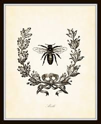 Bee Garden Decor Vintage French Bee With Berry Wreath Botanical Art Print 8x10 Home