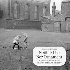 neither use nor ornament 1998 bernard wrigley