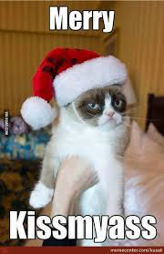 Merry Xmas Memes - merry christmas from grumpy cat they say by kusali meme center