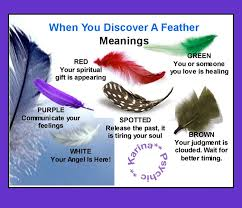 meanings of feathers black white pink blue feathers from your