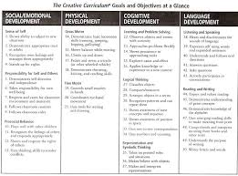 54 best lesson plan forms images on pinterest daycare forms