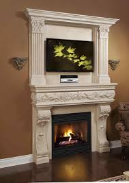 direct vent gas fireplace insert for sale gds50 napoleon
