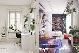 plants at home inspiration decorating with indoor plants checks and spots