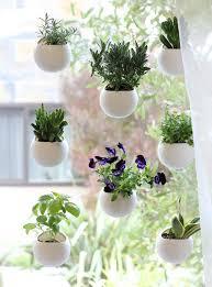Window Sill Herb Garden Designs How To Start A School Garden Window Gardens And Stylish